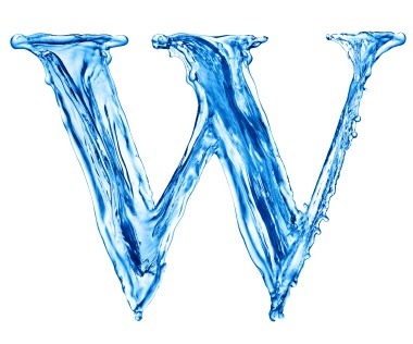 The W's of Health & Fitness